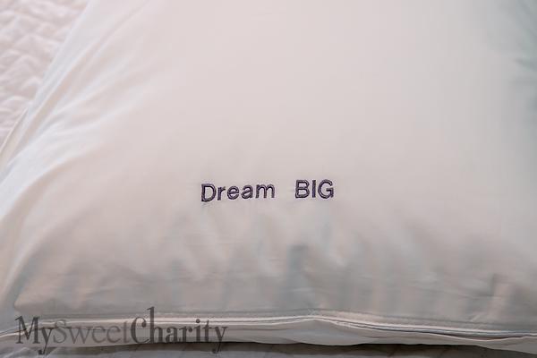 IMG_0986 Pillow
