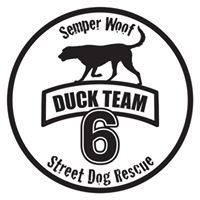 Duck Team 6*
