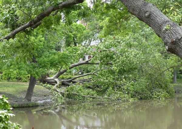 May 8, 2014 storm damage