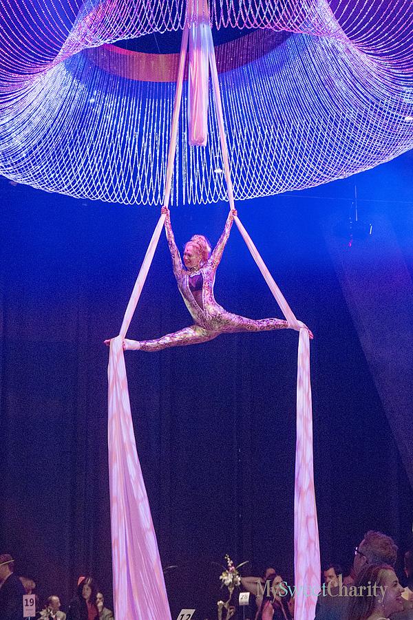 Silk aerialist