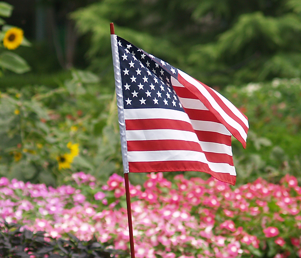 Dallas Arboretum Celebrates Fourth Of July Four-Day Weekend With $5 Admissions And Activities Like Tadpole Feeding