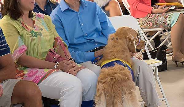 Canine Companions For Independence At  Baylor Scott And White Health — Kinkeade Campus Graduation Had Tears And Cheers