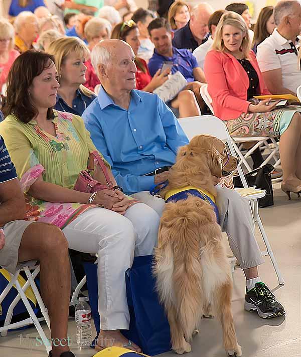 Graduation program in Canine Training Center