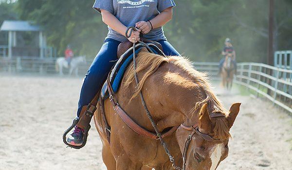 MySweetWishList: Girl Scouts Of Northeast Texas