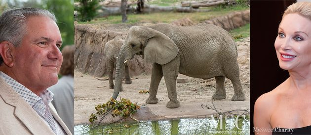 MySweetCharity Opportunity: 2018 Zoo To Do