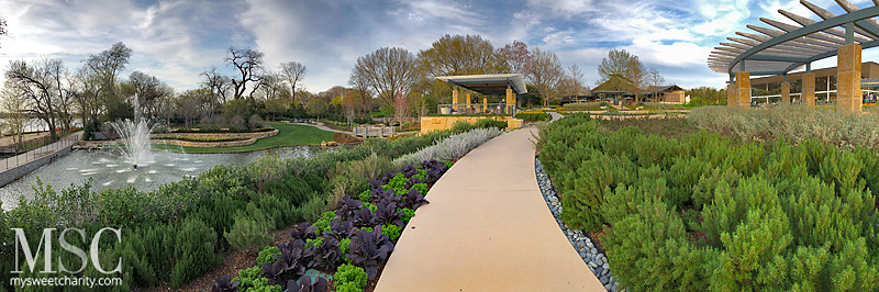 Dallas Arboretum and Botanical Garden, A Tasteful Place,  Margaret and Jay Simmons Lagoon, Three Sisters Lagoon Overlook